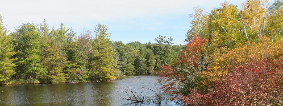 Fall Vacation Rentals